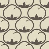 Cotton flower floral seamless pattern background. Royalty Free Stock Photos