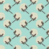 Cotton flower floral seamless pattern background. Stock Image