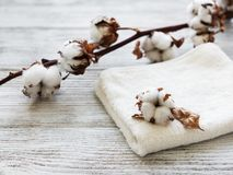 Cotton flower and towel. On a old wooden table royalty free stock photography