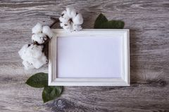 Cotton flowers adorn the white frame. Cotton flowers adorn a white frame on a gray wood background Stock Photography