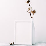 Cotton flowers with empty frame Stock Photography