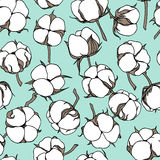 Cotton flowers pattern Stock Images