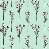 Cotton flowers pattern Stock Photography