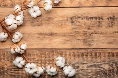 Cotton flowers on background. Cotton flowers on wooden background Stock Photo