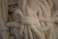 Cotton lints Stock Photos