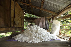 Cotton Material Process Group Pile Royalty Free Stock Images
