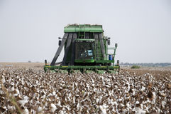 Cotton picker Royalty Free Stock Photos