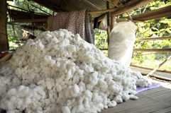 Cotton Pill Group Raw Material Stock Photos