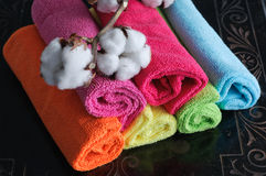 Cotton Plant on Rolled Fabric Royalty Free Stock Image
