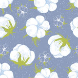 Cotton plant seamless pattern. Hand drawn cotton plant seamless pattern Stock Photos