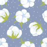 Cotton plant seamless pattern. Hand drawn cotton plant seamless pattern Royalty Free Stock Photo