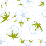 Cotton plant seamless pattern. Hand drawn cotton plant seamless pattern Stock Images