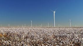 Cotton plantation green energy farm field wind power generation stock video