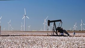 Cotton plantation green energy farm field wind power generation oil pumpjack stock video