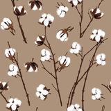 Cotton plants beige seamless vector pattern Royalty Free Stock Photo