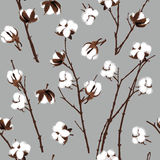 Cotton plants grey seamless vector pattern Royalty Free Stock Photo