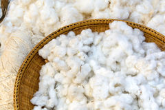 Cotton prepare for make cotton thread Royalty Free Stock Photography