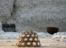 Cotton Processing Factory Yard Royalty Free Stock Image