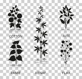 Cotton, ramie, kenaf, jude and flax plants with leaves, pods and flowers. Silhouette icons with reflection on. Transparent background. Vector illustration Royalty Free Stock Images