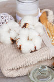 Cotton spa Stock Photography