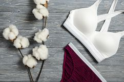 Cotton striped panties and white bra. Women`s lingerie on the wo Stock Photos