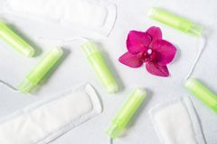 Cotton tampons, menstrual pads with orchid on light grey background. Concept of critical days, menstruation or woman`s health. To. Cotton tampons, menstrual pads royalty free stock images
