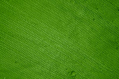 Cotton texture green Stock Photos