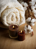 Cotton Towel. Fluffy Towel and Cotton plant Royalty Free Stock Photography