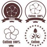 Cotton Stock Photos