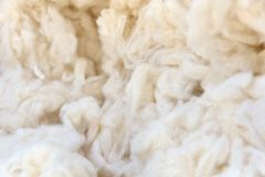 Cotton wool background Stock Photography