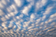 Cotton Wool Cloudscape Royalty Free Stock Image