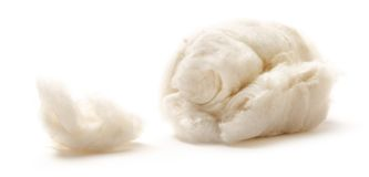 Cotton wool Stock Images