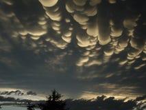 Cottonball-Wolken Stockbild