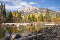 Cottonwood Creek. Flowing through the autumn landscape of Grand Teton National Park, Wyoming royalty free stock images