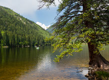 Cottonwood lake near Buena Vista Colorado Royalty Free Stock Image
