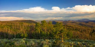 Cottonwood Pass. This is a picture of the beauty from cottonwood pass near Granby Colorado royalty free stock photos