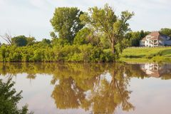 Cottonwood tree reflection on small lake. In spring stock photos