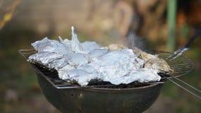Cottura del barbecue della carne e del pollo video d archivio