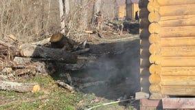 Cottura del barbecue sulla griglia stock footage