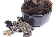 Cottura del fungo del nero di serie dell'ingrediente per i adv ecc del ristorante, della drogheria e di altre fotografie stock