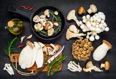 Cottura dell'alimento commestibile dei funghi Immagini Stock