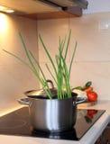 Cottura della minestra di verdura Immagine Stock