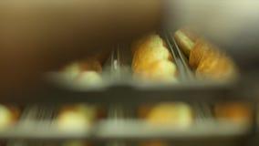 Cottura delle guarnizioni di gomma piuma dolci stock footage