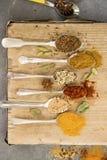 Cottura delle spezie sui cucchiai Fotografia Stock