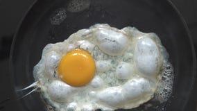Cottura delle uova in burro caldo archivi video