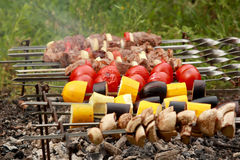 Cottura i kebab e dei pomodori sugli spiedi fotografia stock libera da diritti