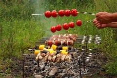 Cottura i kebab e dei pomodori sugli spiedi immagine stock libera da diritti