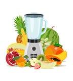 Cottura miscelatore e della frutta Cibo sano Frutta smoothies Illustrazione di vettore Fotografia Stock