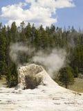 Cottura a vapore del cono del geyser, Yellowstone NP, Wyoming Immagini Stock