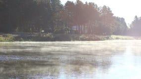 Cottura a vapore del fiume in natura stock footage